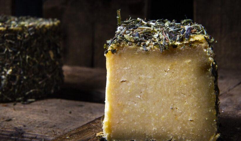 queso vegano ecologico