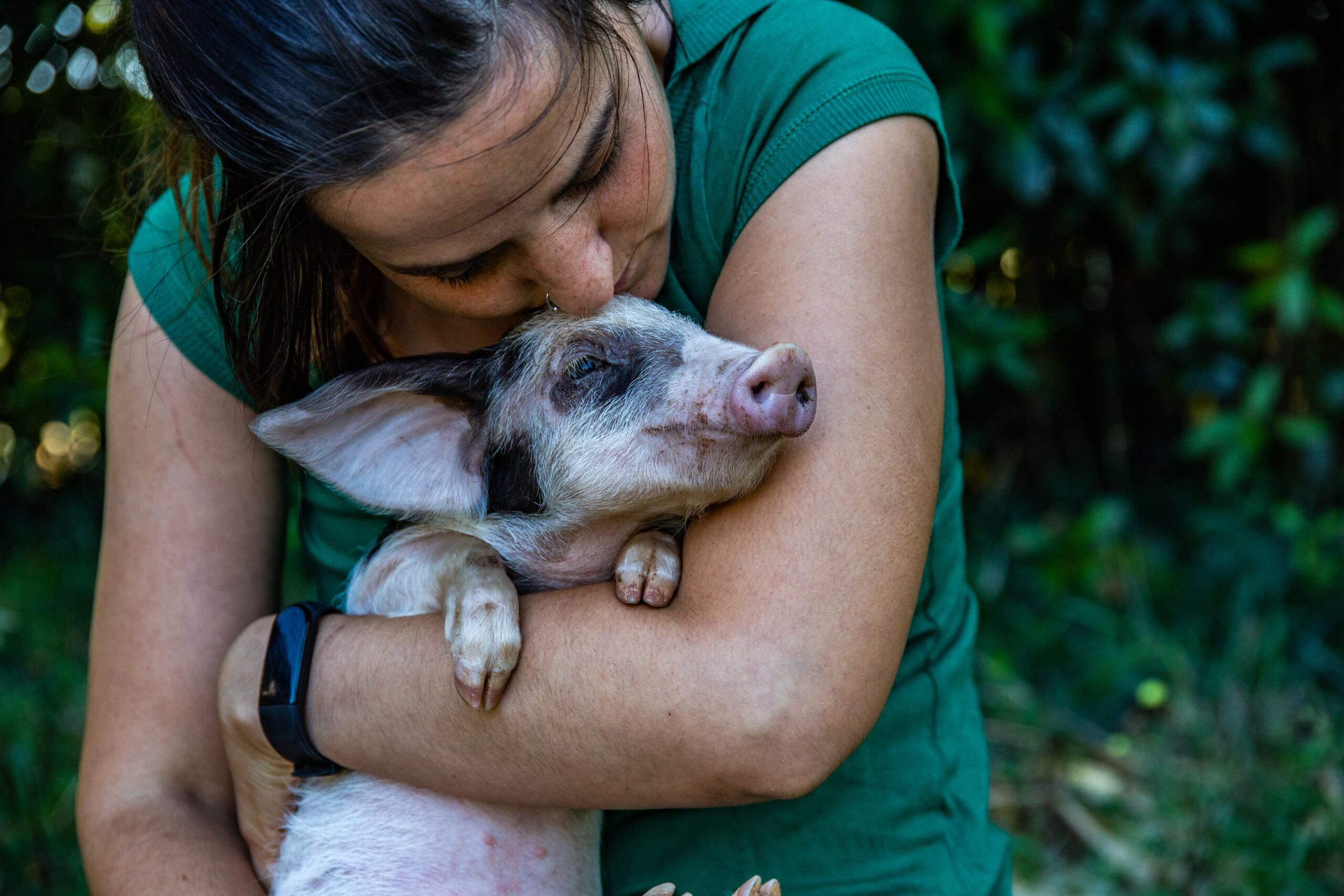 Los 10 Santuarios de Animales más comprometidos de España